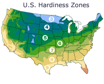 Hardiness Zones - Us planting map